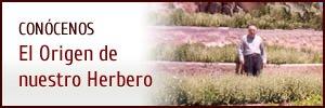 El origen del Herbero RUFO